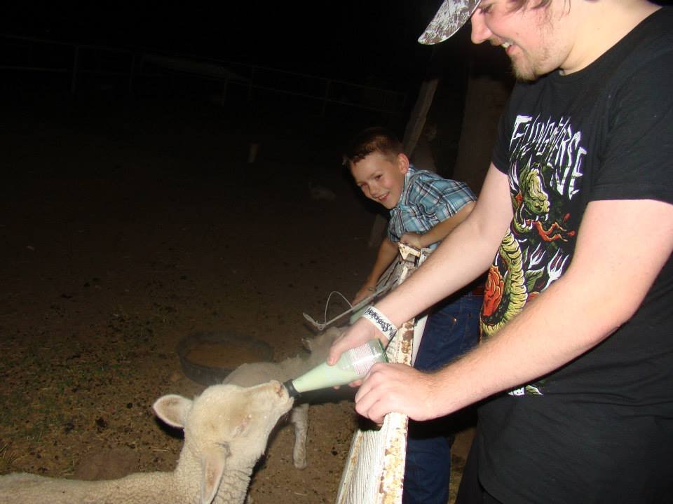 Brock and Justin feeding the doggie lambs